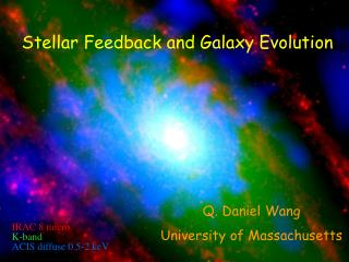 Stellar Feedback  and Galaxy Evolution
