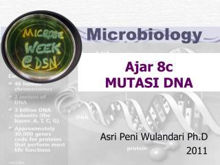 Ajar 8c MUTASI DNA