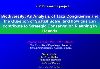 a PhD research project