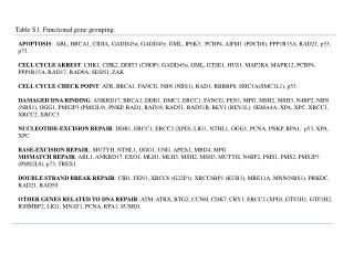 Table S1. Functional gene grouping.