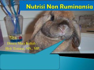 Nutrisi  Non  Ruminansia