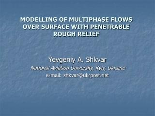 MODELLING OF MULTIPHASE FLOWS OVER SURFACE WITH PENETRABLE ROUGH RELIEF