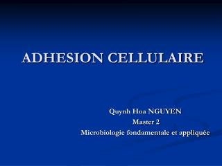 ADHESION CELLULAIRE