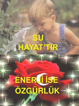 SU HAYAT'TIR