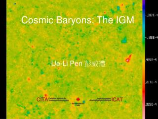 Cosmic Baryons: The IGM
