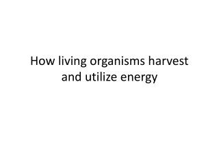 How living organisms harvest and utilize energy