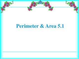 Perimeter & Area 5.1