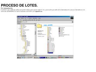 PROCESO DE LOTES. Por Automatización.