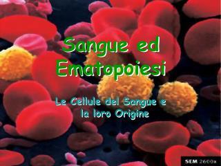 Sangue ed Ematopoiesi