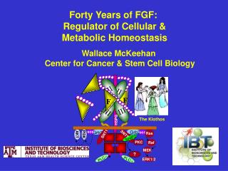 Wallace McKeehan  Center for Cancer & Stem Cell Biology