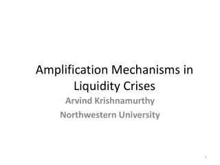 Amplification Mechanisms in Liquidity Crises