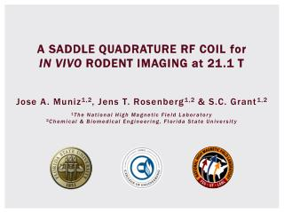A SADDLE QUADRATURE RF COIL  for          IN  VIVO  RODENT IMAGING  at  21.1 T
