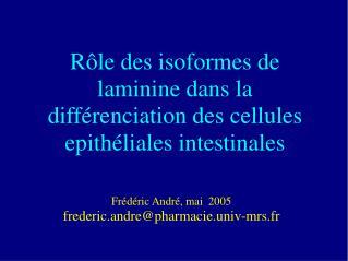 R le des isoformes de laminine dans la diff renciation des cellules epith liales intestinales