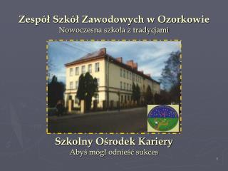 Zespół Szkół Zawodowych w Ozorkowie Nowoczesna szkoła z tradycjami