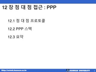 12  장 점 대 점 접근  : PPP