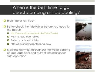 When is the best time to go beachcombing or tide pooling?