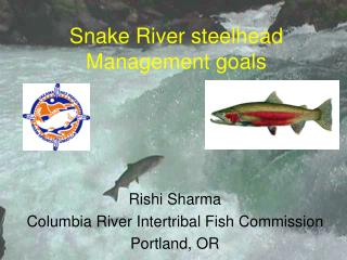 Snake River steelhead Management goals