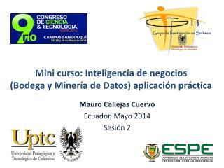 Mini curso: Inteligencia de negocios  (Bodega y Minería de Datos) aplicación práctica