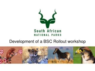 Development of a BSC Rollout workshop
