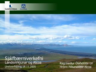 Sjálfbærniverkefni Landsvirkjunar og Alcoa Umhverfisþing 18.11.2005