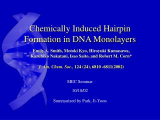 Chemically Induced Hairpin Formation in DNA Monolayers