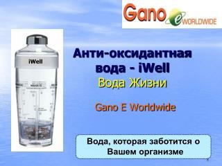 Анти-оксидантная  вода -  iWell Вода Жизни