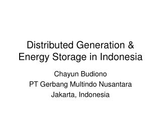 Distributed Generation & Energy Storage in Indonesia