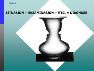 SITUASJON + EKSAMINASJON + RTG. = DIAGNOSE