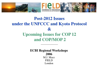 Adaptation Proposals   UNEP - GEF Perspective