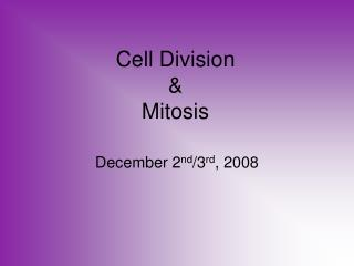 Cell Division  Mitosis