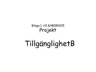 Bilaga 1. till KHR090325 Projekt Tillg�nglighetB