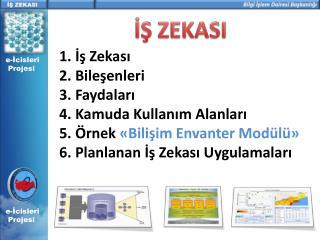 e-İcisleri   Projesi