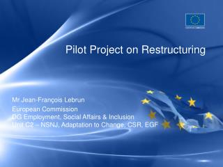 Pilot Project on Restructuring