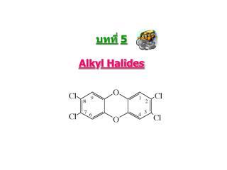 บทที่ 5 Alk y l Halides