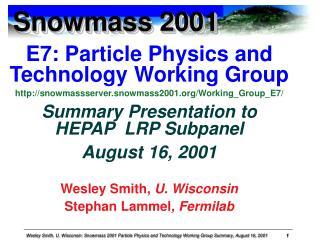 Snowmass 2001
