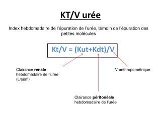 KT/V urée