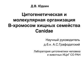 Цитогенетическая и молекулярная организация  В-хромосом хищных семейства  Canidae