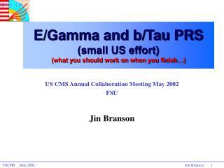 US CMS Annual Collaboration Meeting May 2002 FSU  Jin Branson
