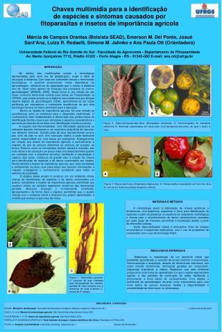 Chaves multimídia para a identificação  de espécies e sintomas causados por