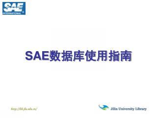 SAE 数据库使用指南