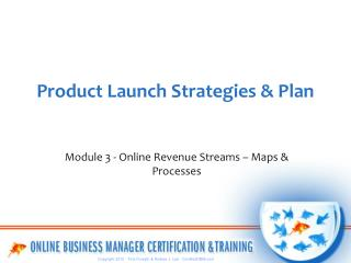 Product Launch Strategies & Plan