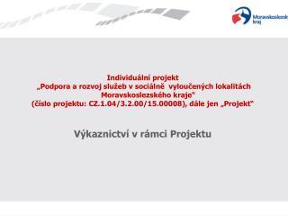 Individuální projekt
