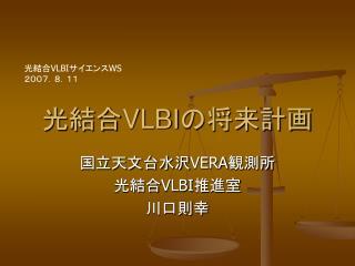 光結合 VLBI の将来計画