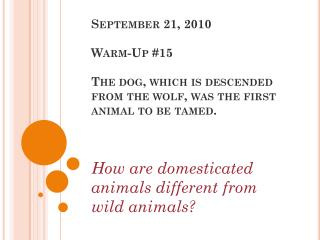 How are domesticated animals different from wild animals?