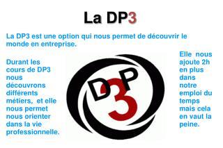 La DP3 est une option qui nous permet de découvrir le monde en entreprise.