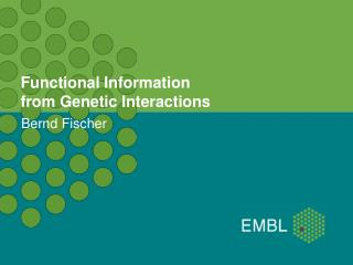 Functional Information from Genetic Interactions