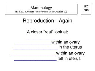 Mammalogy  (Fall 2012 Althoff  - reference FDVM Chapter 10)