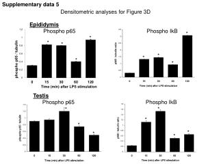 Densitometric analyses for Figure 3D