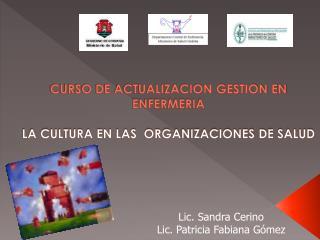 CURSO DE ACTUALIZACION GESTION EN ENFERMERIA LA CULTURA EN LAS  ORGANIZACIONES DE SALUD