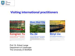 V isiting  international practitioners